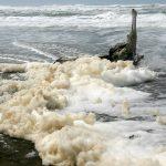 Entre espumas de olas blancas