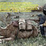"""Lee más sobre el artículo """"La dureza orográfica: el peor rival del ejército colonizador en Marruecos"""""""